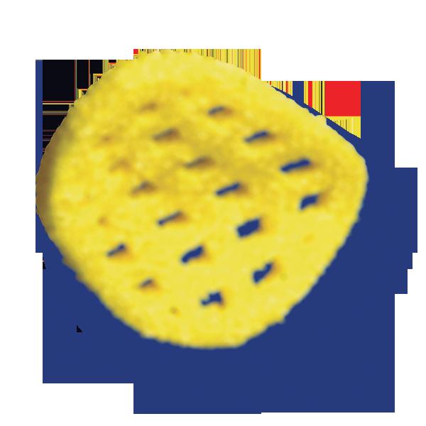 potato grills salt chips
